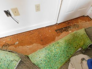 claims, residential claims, water loss