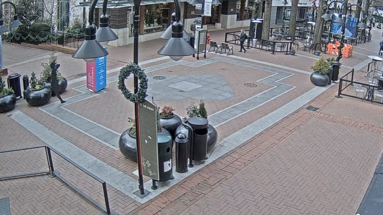 Charlottesville virginia Webcam, claims